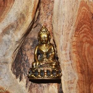 buddha medicine