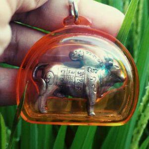 magickal bull 2